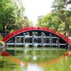 住吉大社の太鼓橋の写真