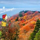 紅葉が綺麗な金剛山で秋のハイキング