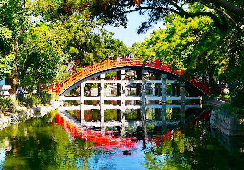朱塗りで風情を感じる住吉大社の反橋