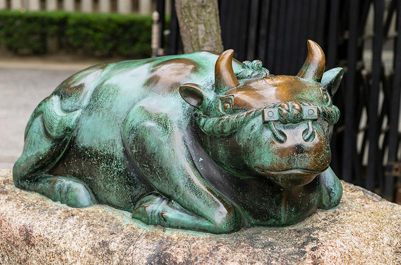 大阪天満宮にある撫で牛の像