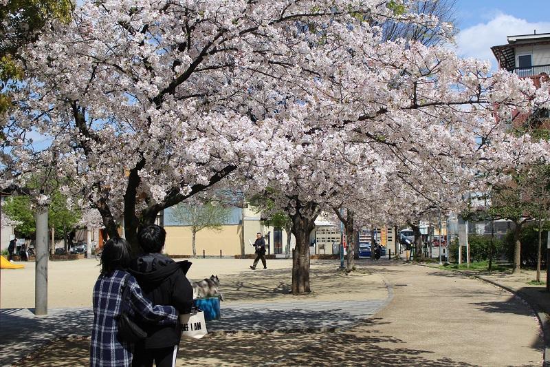 生野コリアタウン横の御幸森第2公園