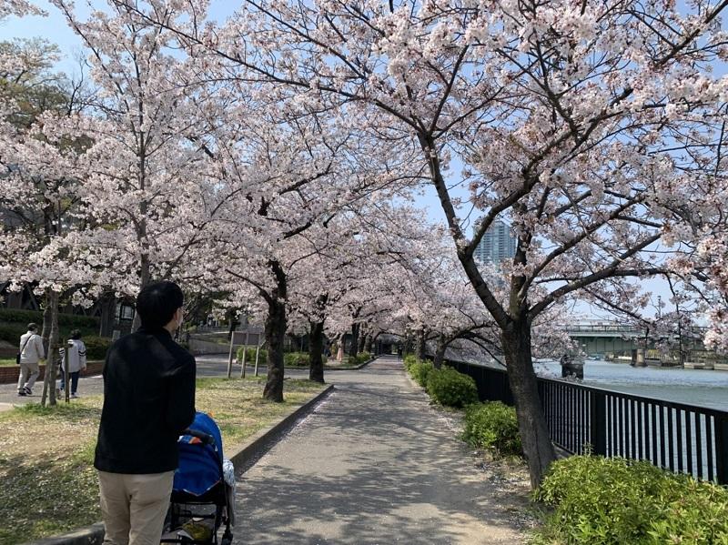 毛馬桜之宮公園のプロムナード