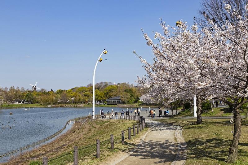 鶴見緑地の都心を忘れる桜の景色
