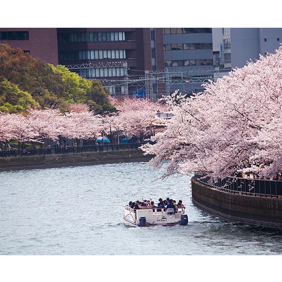 大阪游览船