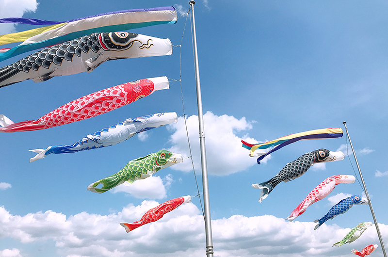 Children's Day in Japan is celebrated with carp streamers (koinobori) flying in the sky