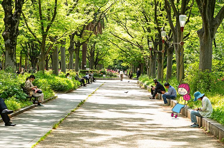 靭公園のケヤキの並木道