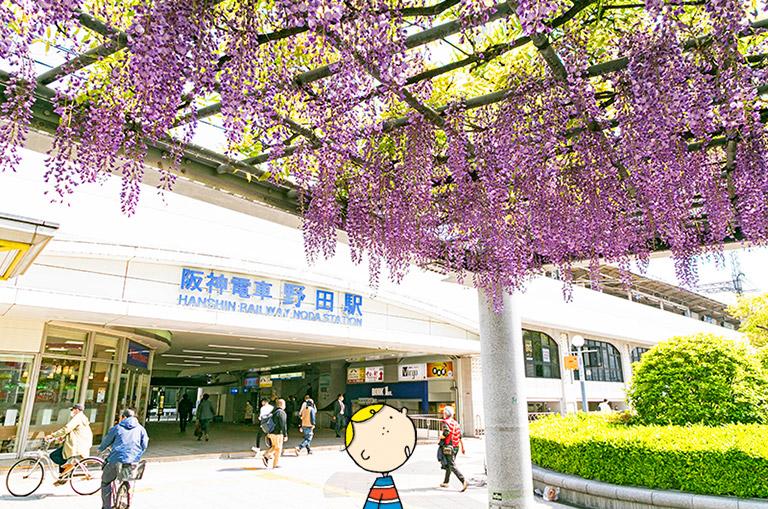 阪神野田駅前の藤棚