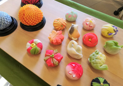 Colorful wagashi, delicately molded traditional Japanese sweets in the shapes of a cat, swan, camellia and other seasonal flowers and shapes arranged together