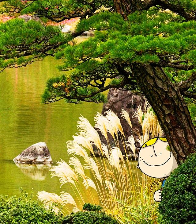 秋の万博記念公園内の日本庭園