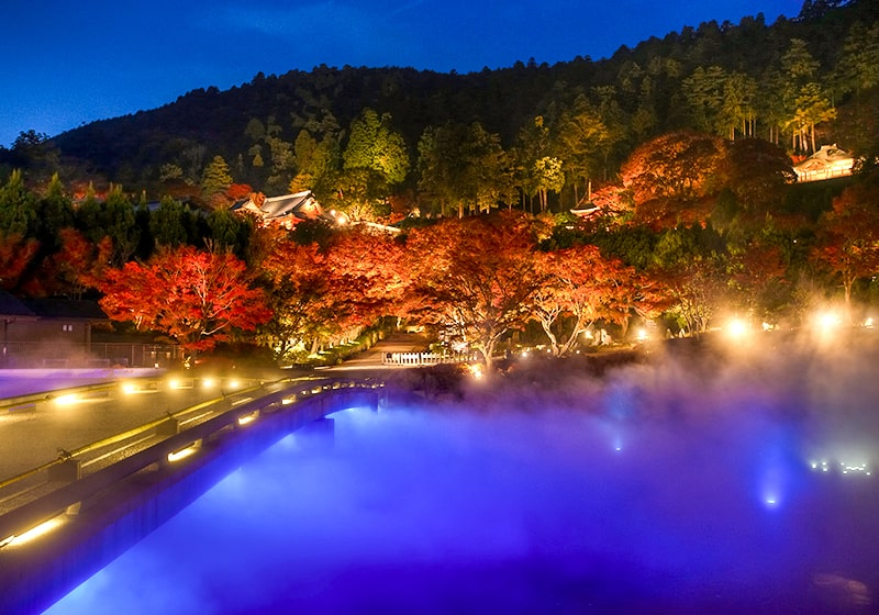 秋の勝尾寺の夜間ライトアップ