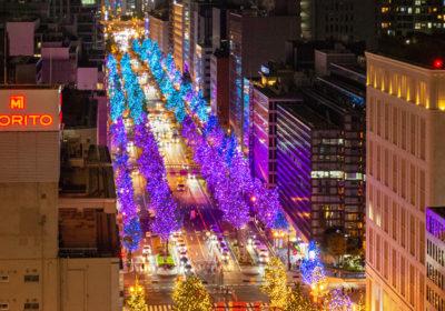 光に包まれる大阪ナイトを楽しもう!大阪・光の饗宴2021